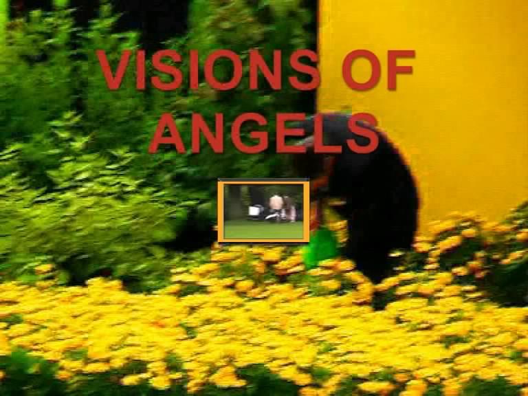 http://www.manfred-gebhard.de/Vision.a.jpg