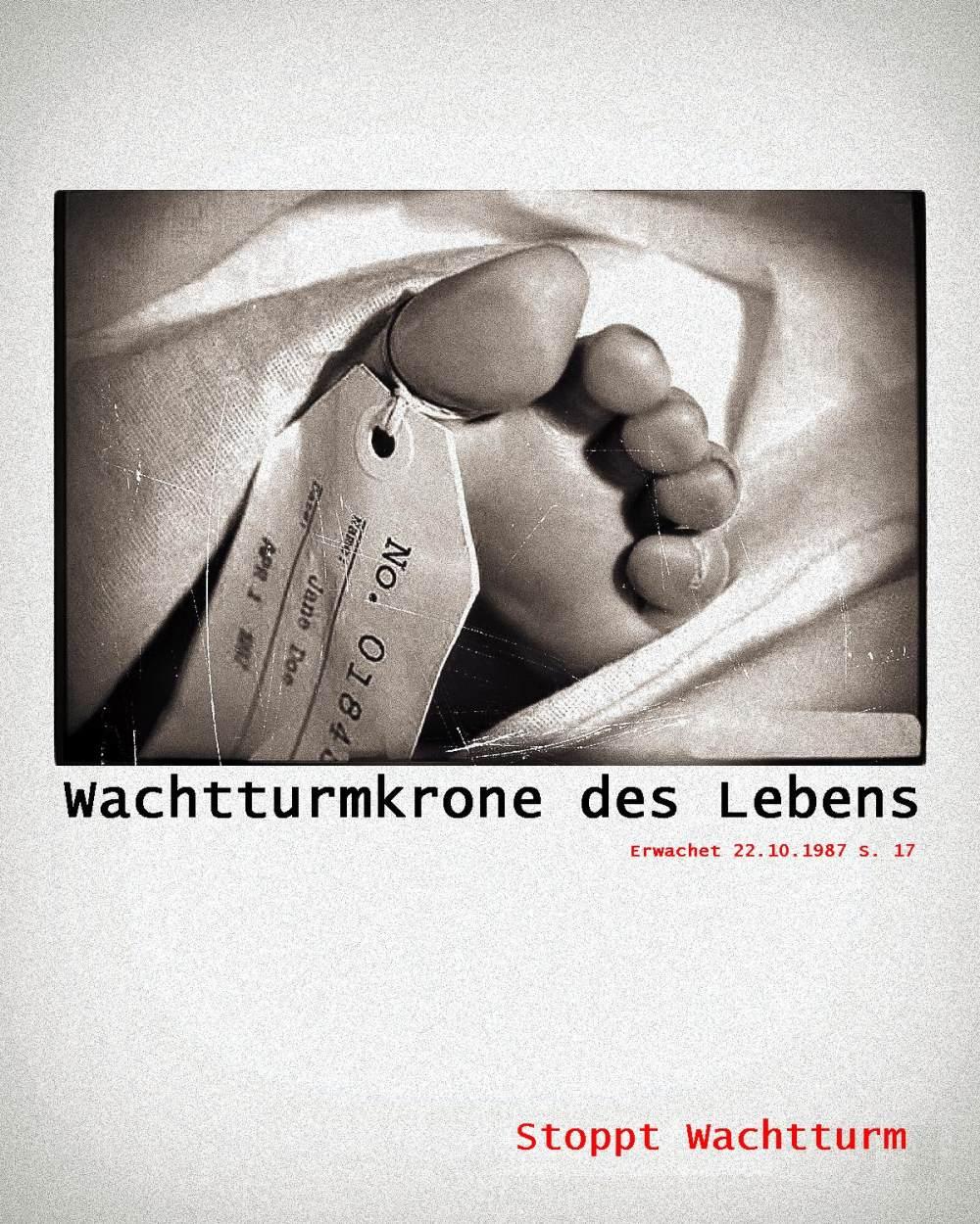 picture: http://www.manfred-gebhard.de/Wachtturmkrone.jpg