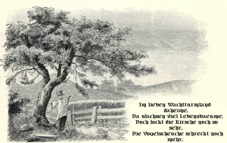 picture: http://www.manfred-gebhard.de/Wachtturmland4.jpg