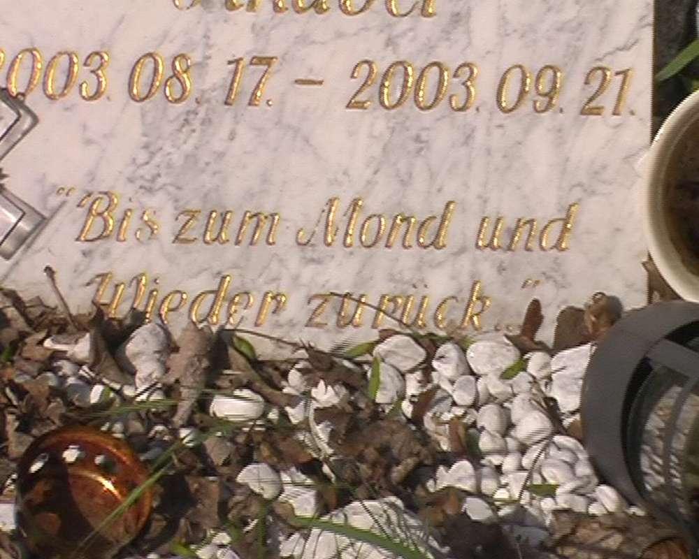 picture: http://www.manfred-gebhard.de/zentralfriedhof7.jpg